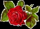 http://animashki.ucoz.com/_ph/74/2/654540214.png